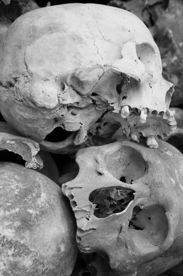 Killing Fields - Skulls 2