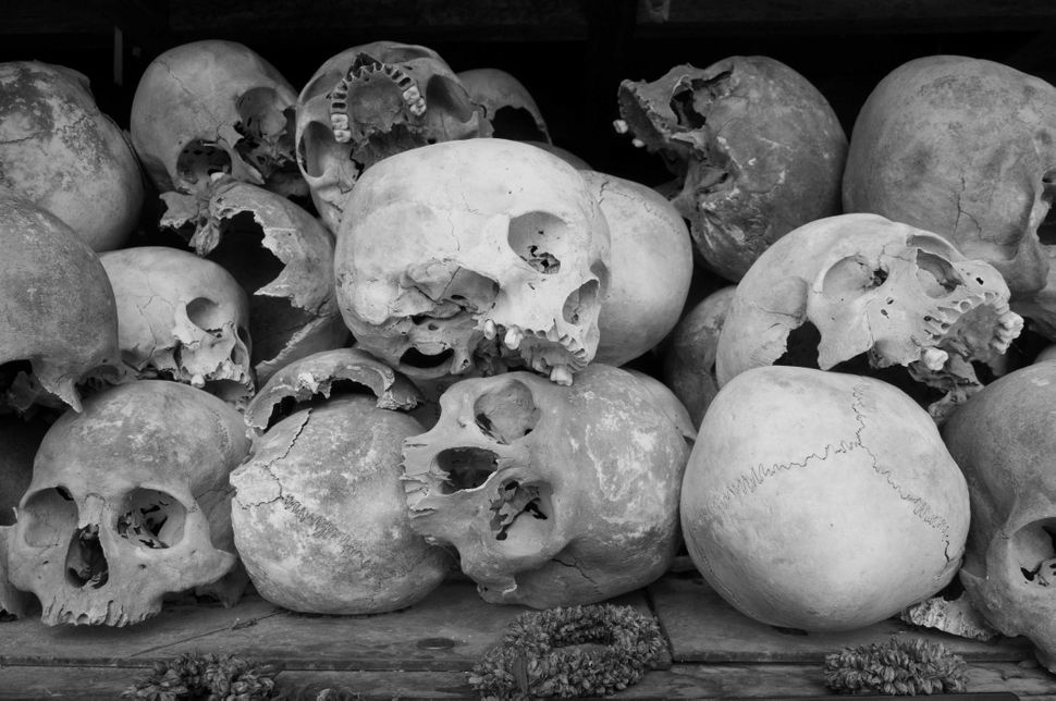 Killing Fields - Skulls