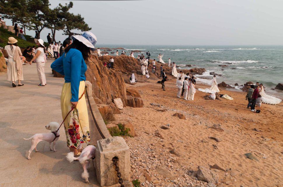 Badaguan, peeing dog, Qingdao