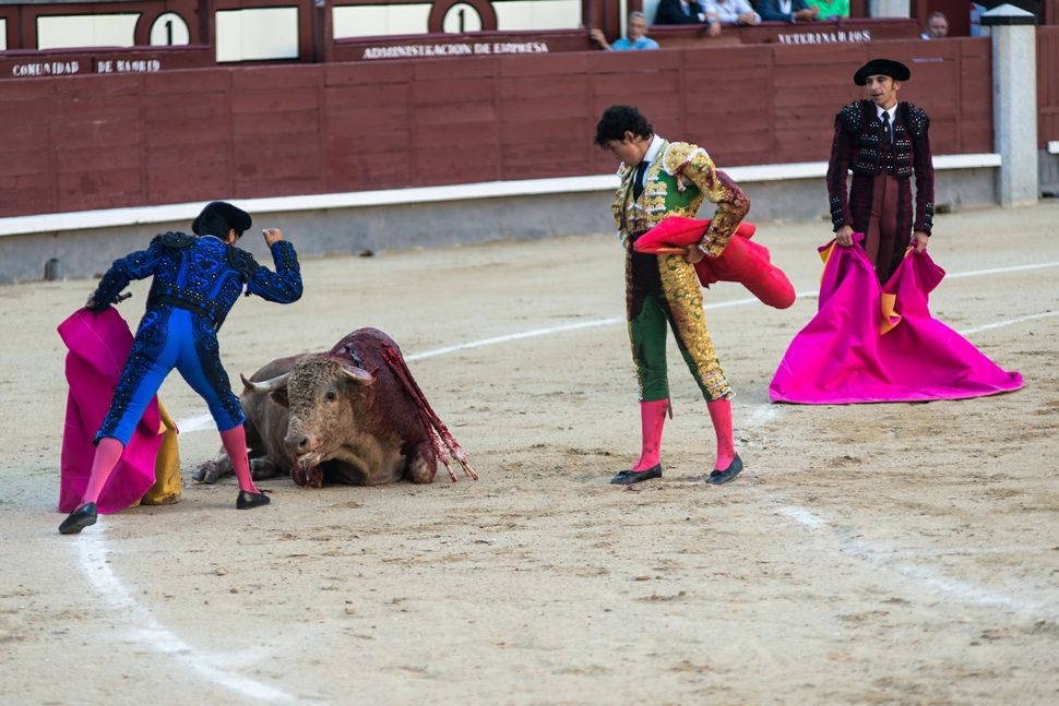 Diego Fernàndez - paying the bull his final respects 2