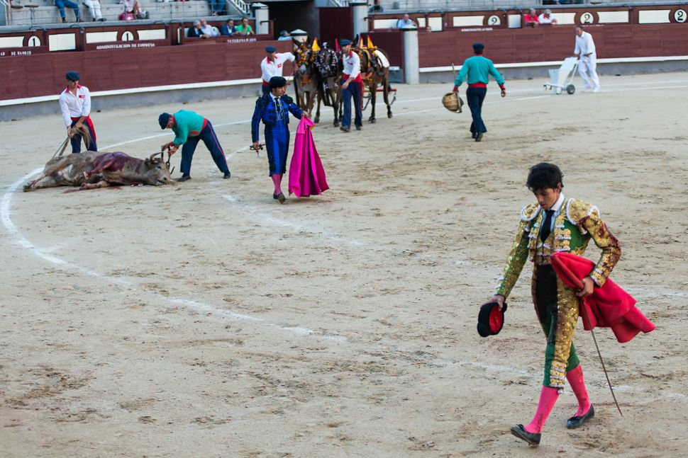 Diego Fernàndez - with dead bull