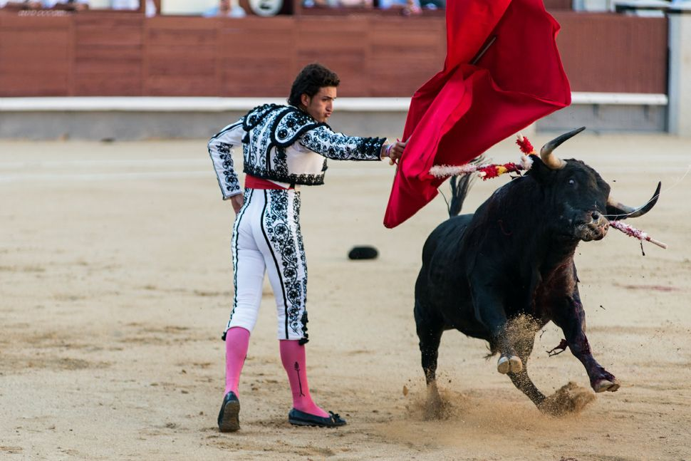 Jesus Duque - dancing with the bull