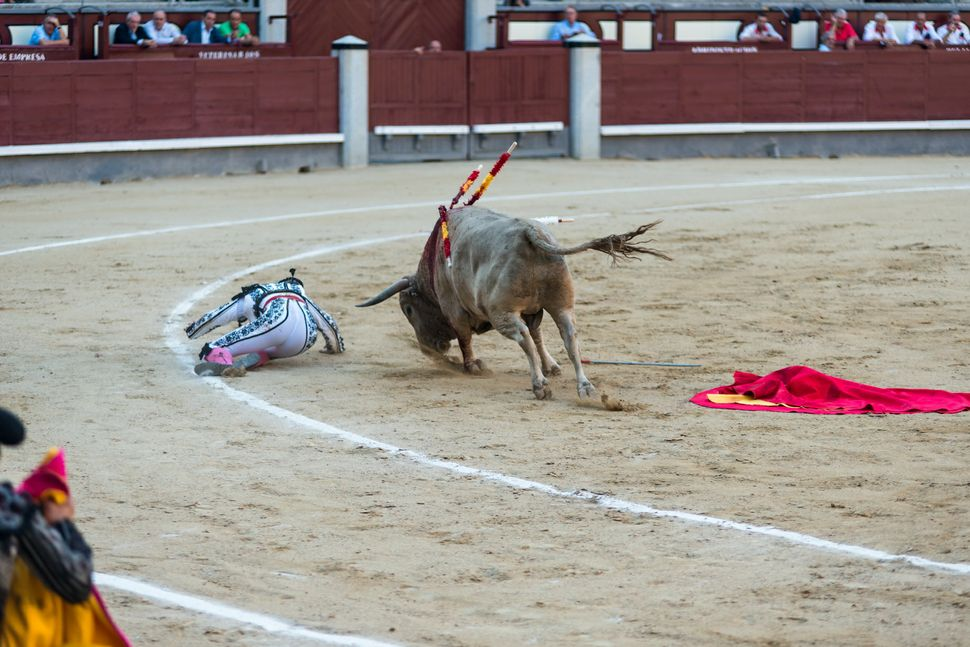 Jesus Duque - torero down