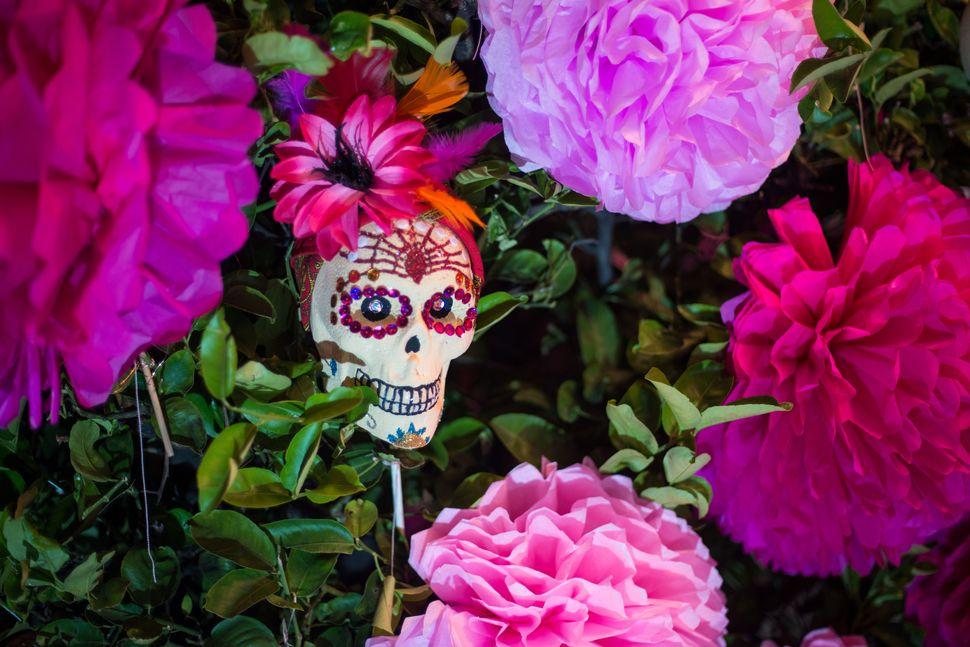 Dia de muertos skull, Guadalajara