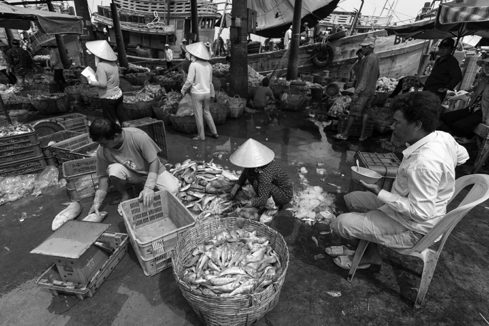 Fish market in Vung Tau 11