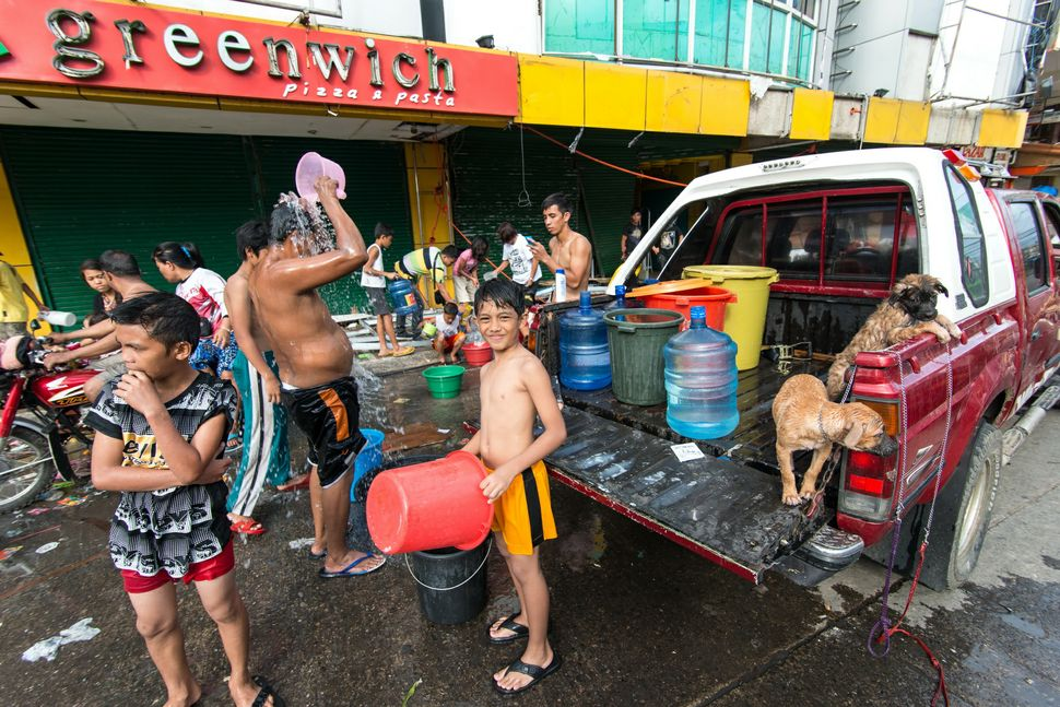 Children taking a bath in the street, washed dogs shaking ...