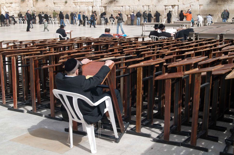 Orthodox Jew at the Wailing Wall