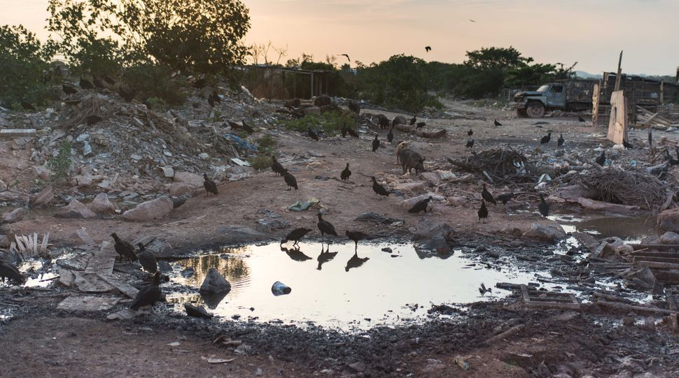 Jardim Gramacho, Rio de Janeiro´s landfill