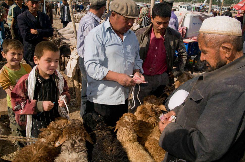 Cattle market, Kashgar, 3