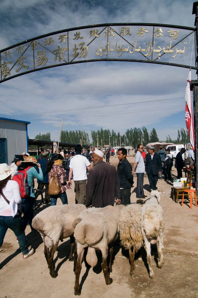Cattle market, Kashgar