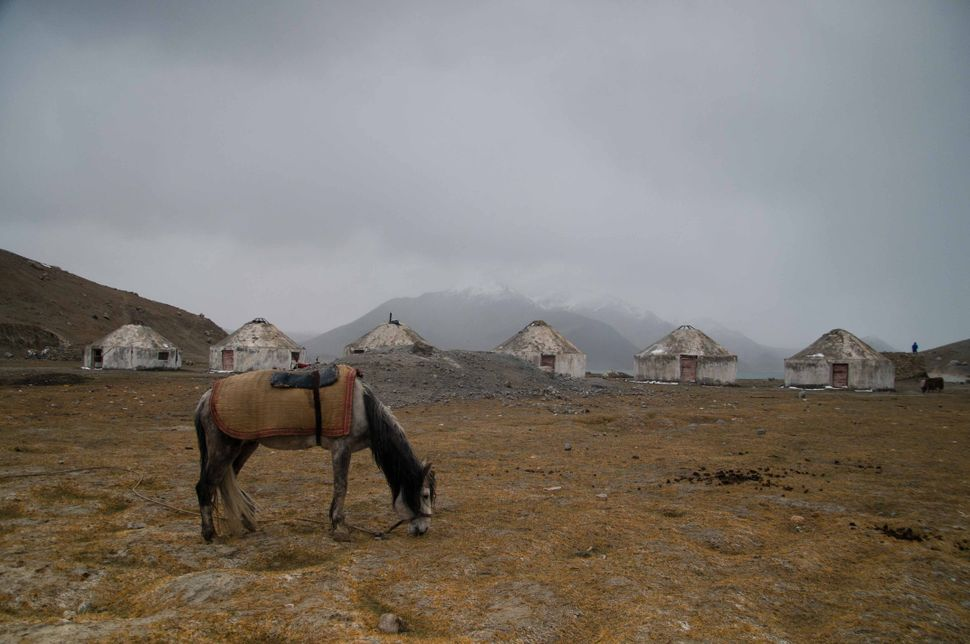 Horse and yurts at Lake Karakul