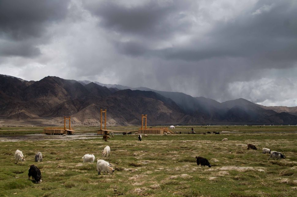 Sheep grazing near Tashkurgan, storm clouds