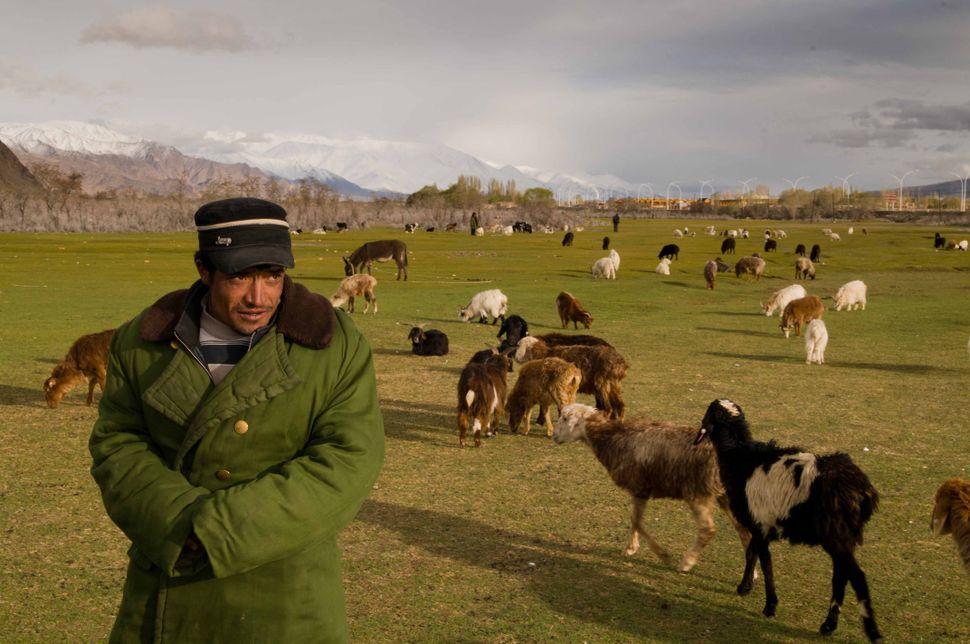 Tajik shepherd, Tashkurgan