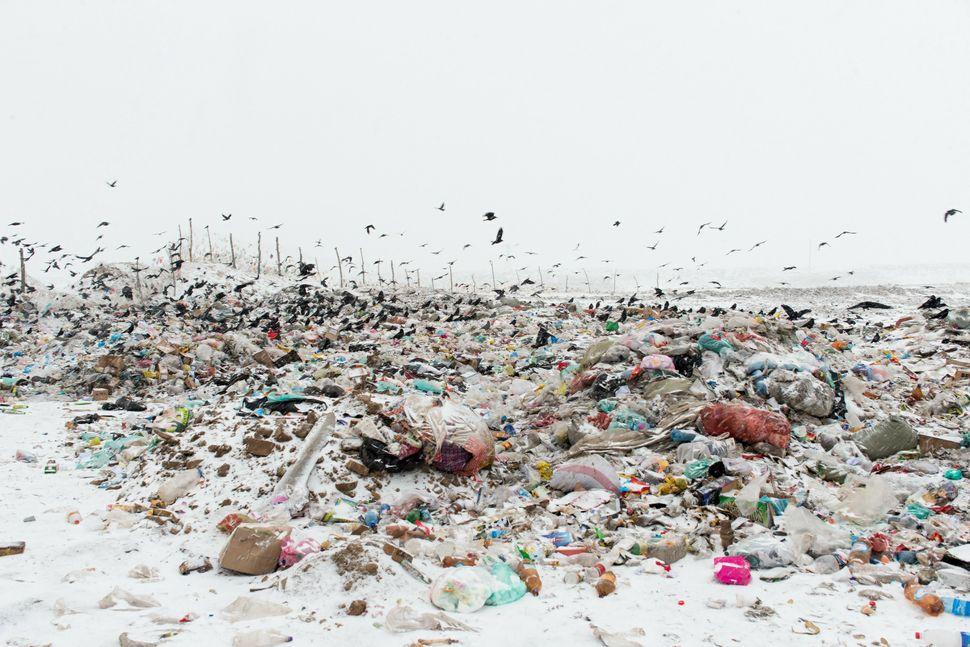 Dumping ground, Karakol