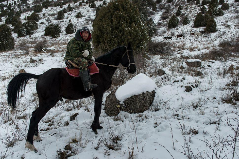 Kyrgyz cowboy